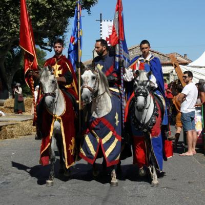 Des chevaliers