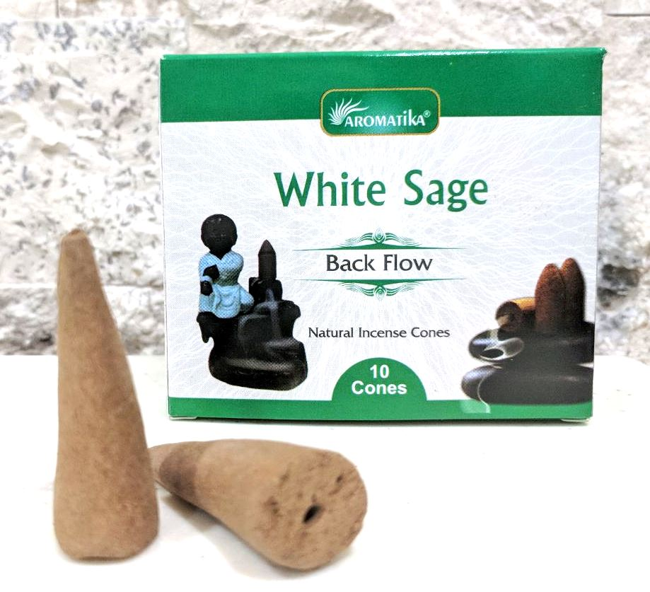 Cones back flow white sage sauge blanche 1