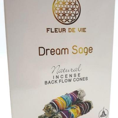 Dream Sage