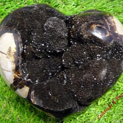 Coeur Septaria sauvage 1.322 kg (22)