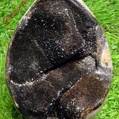 Oeuf Septaria sauvage 626 g (24)