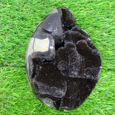 Septaria sauvage 876 g (6)